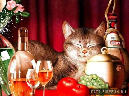 02166-makoto_muramatsu_11-cats.firefun.ru[1]